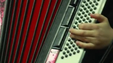 Man plays accordion — Stock Video