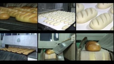 Manufacture of bread — Stock Video
