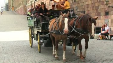 Carriage with horses — Stockvideo