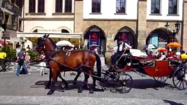Carriage with horses — Wideo stockowe