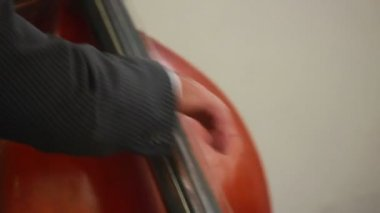 Man with contrabass — Stock Video