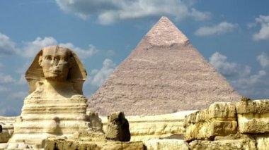 Egypte sphinx — Stockvideo