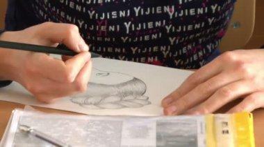 Woman Hand draws — Stock Video