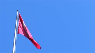 Swiss flag flutters against a blue sky — Stock Video