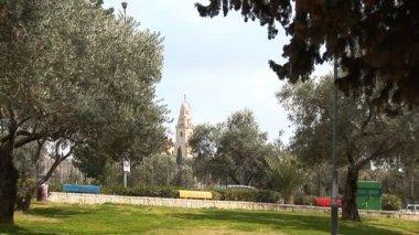 City Park in Jerusalem — Stockvideo