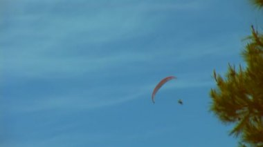 Paragliding — Stock video
