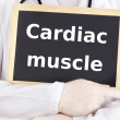Doctor shows information: cardiac muscle — Stock Photo