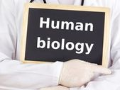 Doctor shows information on blackboard: human biology — Stock Photo