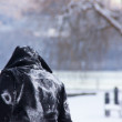 Stock Photo: Person in snowscape