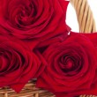 Roses in a basket - Stockfoto