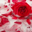 Stock Photo: Bath water with rose petals