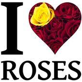 I love roses — Stock Photo