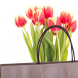 Bunch of tulips with bag — Stock Photo