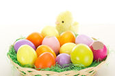 Easter eggs in a basket with chick — Stock Photo