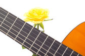Beautiful yellow rose with guitar — Stock Photo