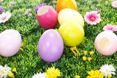Some colorful Easter eggs on a blooming meadow — Stock Photo