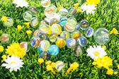 Lot of beautiful and colourful marbles on flower meadow — Stock Photo
