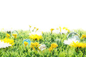 Playing with colorful marbles on flowering meadow — Stock Photo