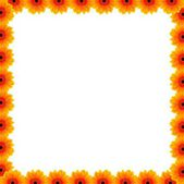 Beautiful flower border with free space — Foto de Stock