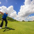 Stockfoto: Golfer swinging his gear and hit golf ball from tee to f