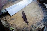 Realistické nůž a prkénko po použití — Stock fotografie