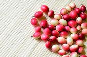 Koromcha or Carandas fruite of Southeast Asia — Stock Photo