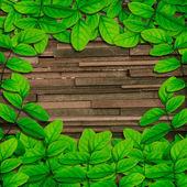 Abstract green leafs auf grunge-holz-hintergrund — Stockfoto