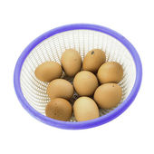 Dirty eggs basket isolated on white background — Foto de Stock