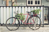 Old bicycle and flowers — Stock Photo