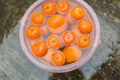 Oranges in water with wet floor — Stock Photo