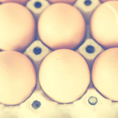 Dept of filed eggs with retro filter effect — Stock Photo