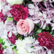 Roses and canation flowers process in pastel tone. — Stock Photo