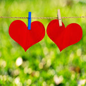 Red heart shape on note paper attach to rope with clothes pins o — Stock Photo