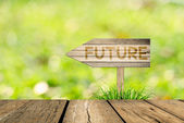 Future message on Wooden sign board with grass and bokeh backgro — Stock Photo