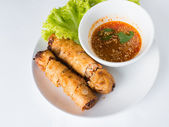 Fried Spring rolls isolated on white. — Photo