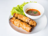 Fried Spring rolls isolated on white. — Foto de Stock