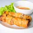 Fried Spring rolls isolated on white. — Stock Photo #45348987