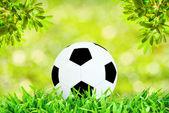 Piłka na zielone pole z słoneczny dzień z selektywne focus — Zdjęcie stockowe