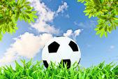 Pallone da calcio su sky naturale sfondo blu verde erba. — Foto Stock