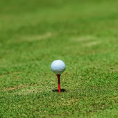 Golf ball on tee over a blurred green. Shallow depth of field. F — Stock Photo