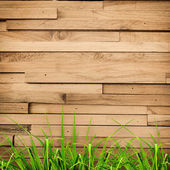 Fresh spring green grass over wood fence background — Stock Photo