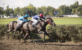 ROSTOV-ON-DON, RUSSIA-SEPTEMBER 22 - Riders on horseback gallopi — Stock Photo