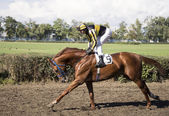 ROSTOV-ON-DON, RUSSIA-SEPTEMBER 22 - The rider rides a horse at — Stock Photo