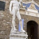 David in Piazza della Signoria. Florence — Stock Photo #47283567