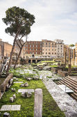 Roman Forum. Here there was the social life of the city. Rome — Foto Stock