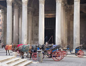 Carriage with horse drawn expect passengers.Rome — Stock Photo