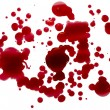 Glossy blood (red paint) droplets (splatters) isolated - Stock Photo