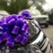 Royalty-Free Stock Photo: The car decorated with bows