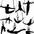Gymnastics Rings Silhouettes — Stock Vector #23307916