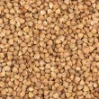 Buckwheat groats fullscreen background — Stock Photo #33369091